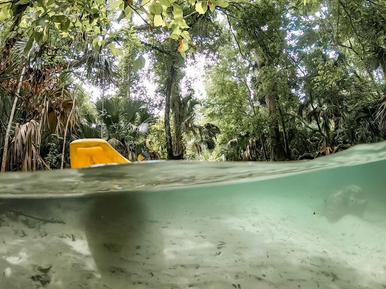 rock springs kayak